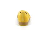 62450  22 mango - Photo