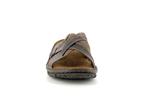 18402  04 brown - Photo